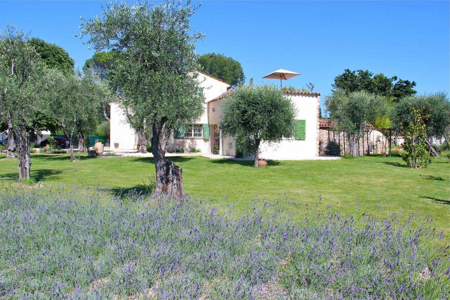 La maison d'hôtes La Vieille Ferme de Grasse et son champ de lavandes