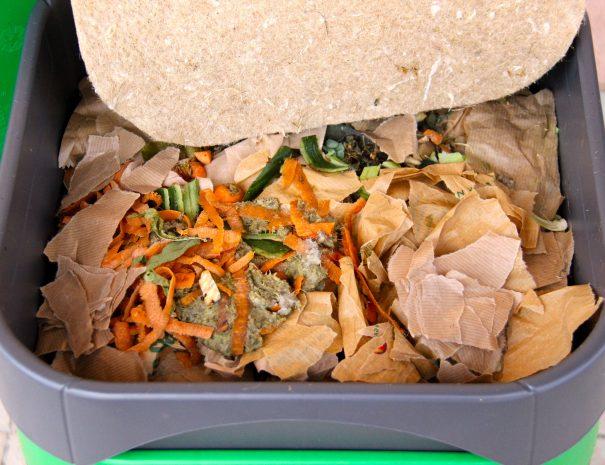lombricomposteur et déchets verts de cuisine