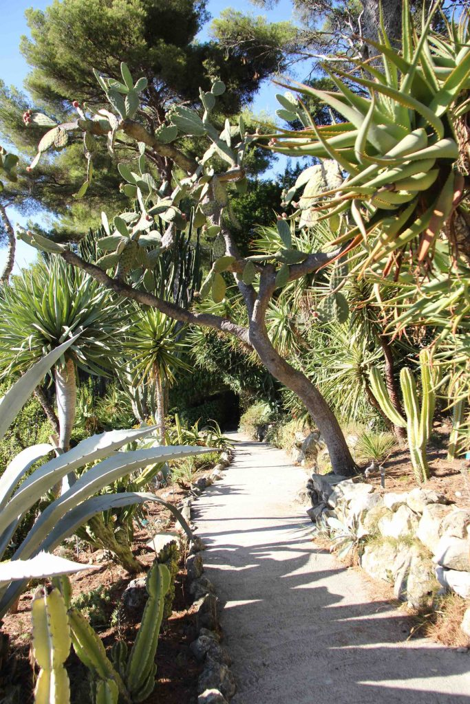 Jardin exotique de la Villa Ephrussi