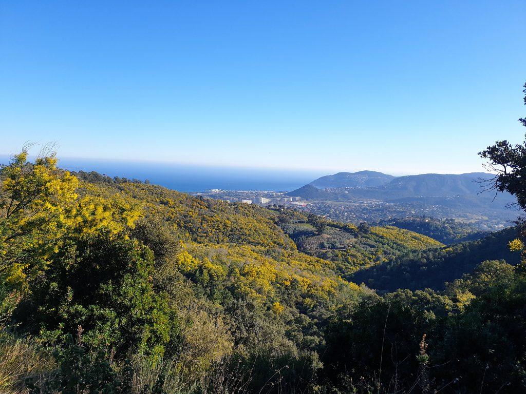 Vue sur Mandelieu-la-Napoule