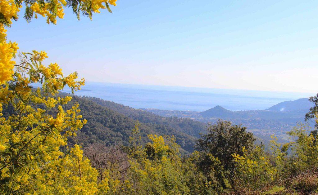 Vue sur Mandelieu-la-Napoule et San Peyre