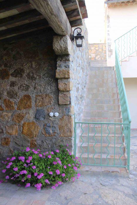 Escalier, pierres et géranium rosat